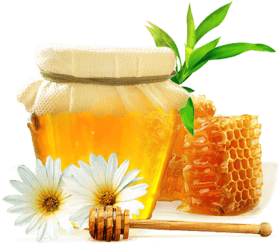 honey to increase penis size