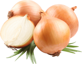 onions to increase penis size