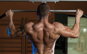 Back Muscle Exercises